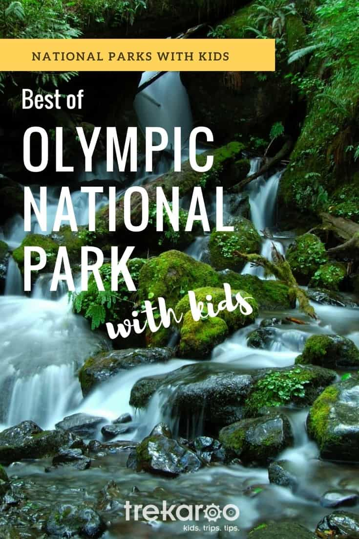 The Best Things to Do in Olympic National Park with Kids: Dramatic ocean cliffs, secluded beaches, moist green rainforests, snow cap peaks. Olympic National Park will surprise you at every turn.  #nationalparks #washingtonstate #familytravel