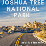 Joshua Tree National Park- When to Visit, Things to do, Best Hikes, & More! 1