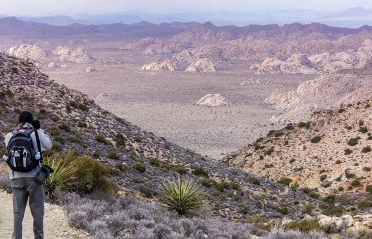 The view from Ryan Mountain in Joshua Tree National Park