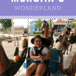 Morgan's Wonderland: An Amusement Park for all Abilities 1