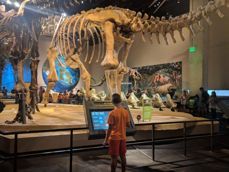 things to do in Dallas with kids, Perot Museum of Nature and Science