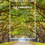 Family-Friendly Road Trip Charleston SC to Savannah GA 1