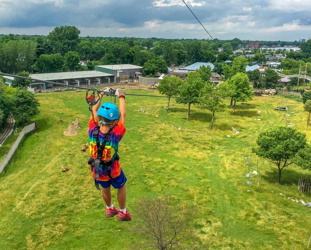 Things to Do in Toledo with Kids – Zip line at the Toledo Zoo