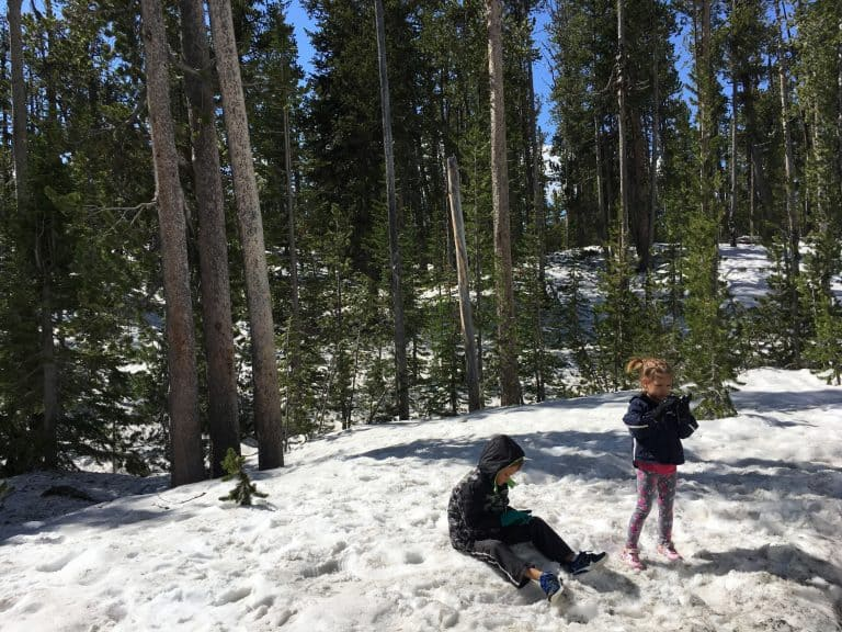 yellowstone national park snow play