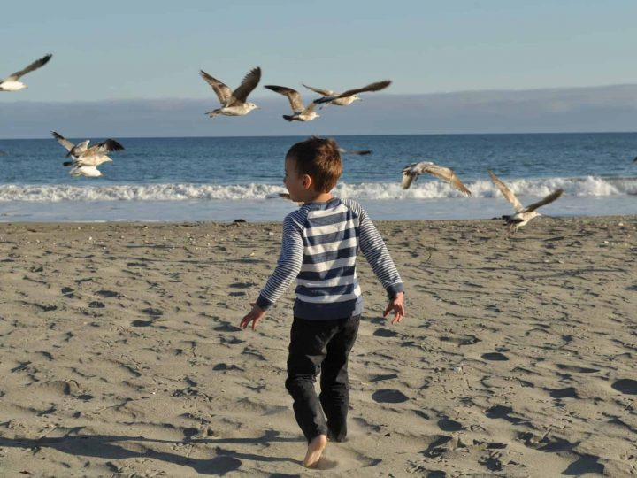 Family Vacation Tips: Planning Your First Trip with Kids