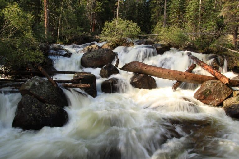 Best Hikes in Rocky Mountain National Park Ouzel Falls