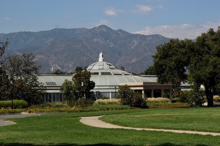 Things to do in Pasadena Things-to-do-in-Pasadena-Huntington-Library-Michelle-McCoy