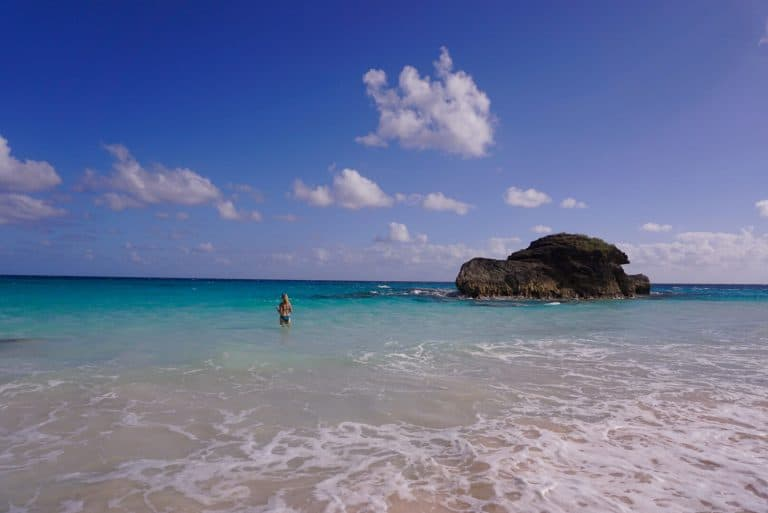 Pink Sand Horseshoe bay in Bermuda Island