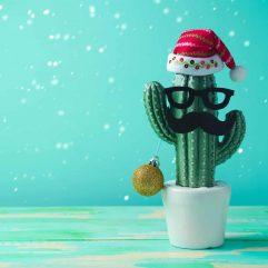 Arizona Christmas Events Guide 2021
