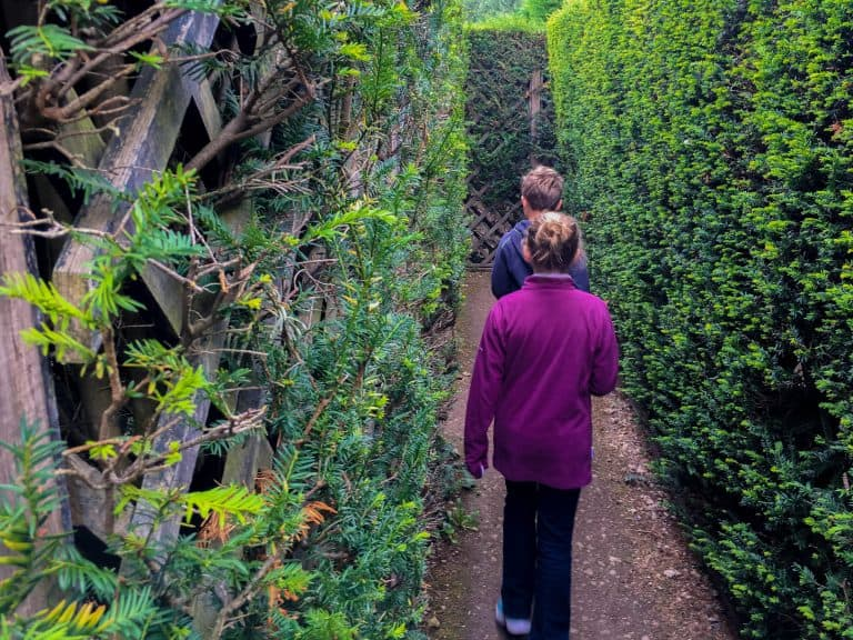 Day Trips from London Dragonfly Maze