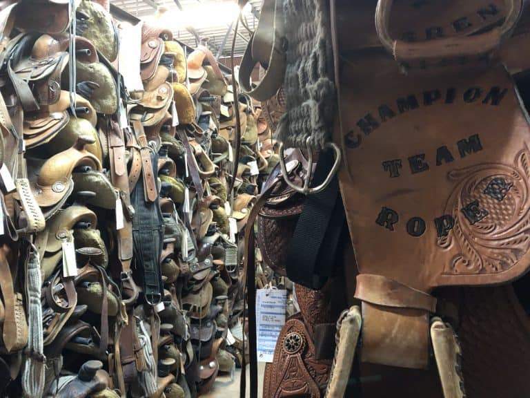 gallup-new-mexico-saddles-2