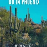 21 Free Things To Do in Phoenix (with kids!) 1