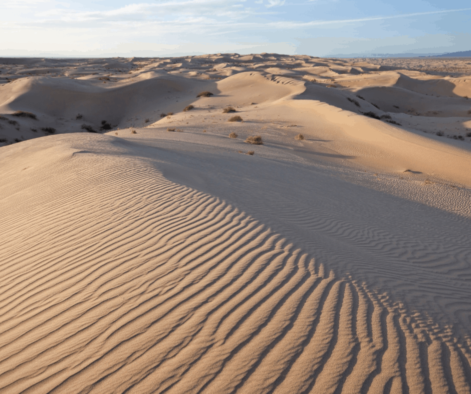Things to do in Yuma Imperial Sand Dunes