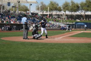 Arizona Spring Training Phoenix Cactus League