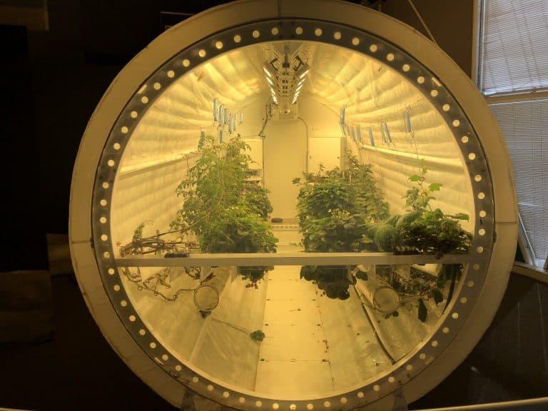 biosphere 2 biosphere tucson