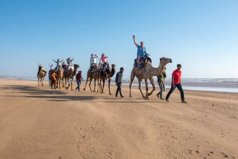 Travel to Morocco family tour camels