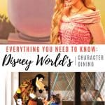 Disney World Character Dining- Everything You Need to Know 1