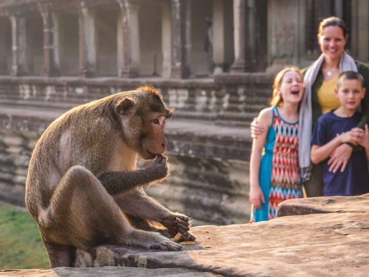 Temple Tour Angkor Wat Cambodia