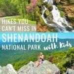 Hiking Shenandoah National Park with Kids 1