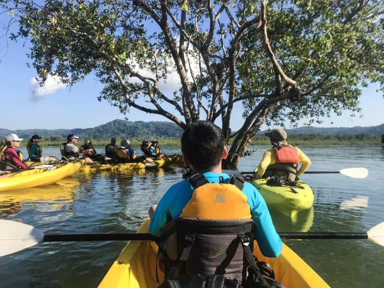 Osa Peninsula Rio Esquinas Kayaking through Mangrove Forest