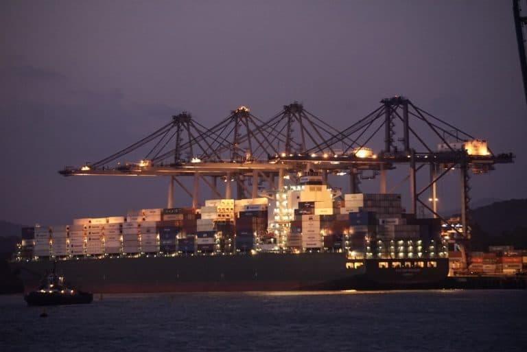 Panama Canal Cruise Cargo Giraffe Cranes at Miraflores