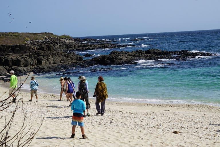 Panama Cruise Iguana Island Frigate bird hike