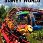 The Ultimate Disney World Ride Guide