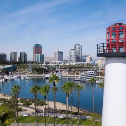 10 Fun Things to do in Long Beach with kids
