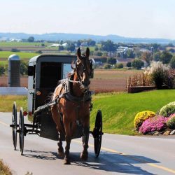 Top 10 Things to do in Pennsylvania with kids