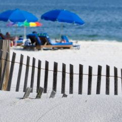 The 10 Best Things to do in Gulf Shores with kids!