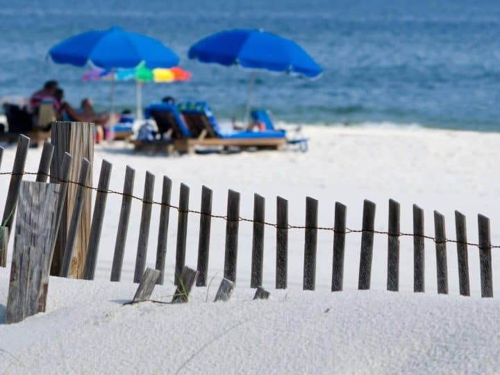things to do in Gulf Shores with kids