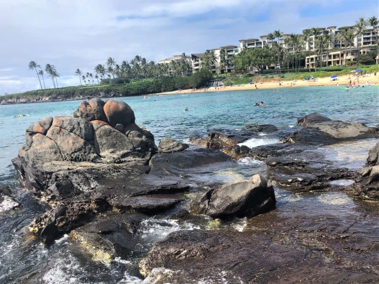 Things to do in Maui with kids Kapalua Bay Beach