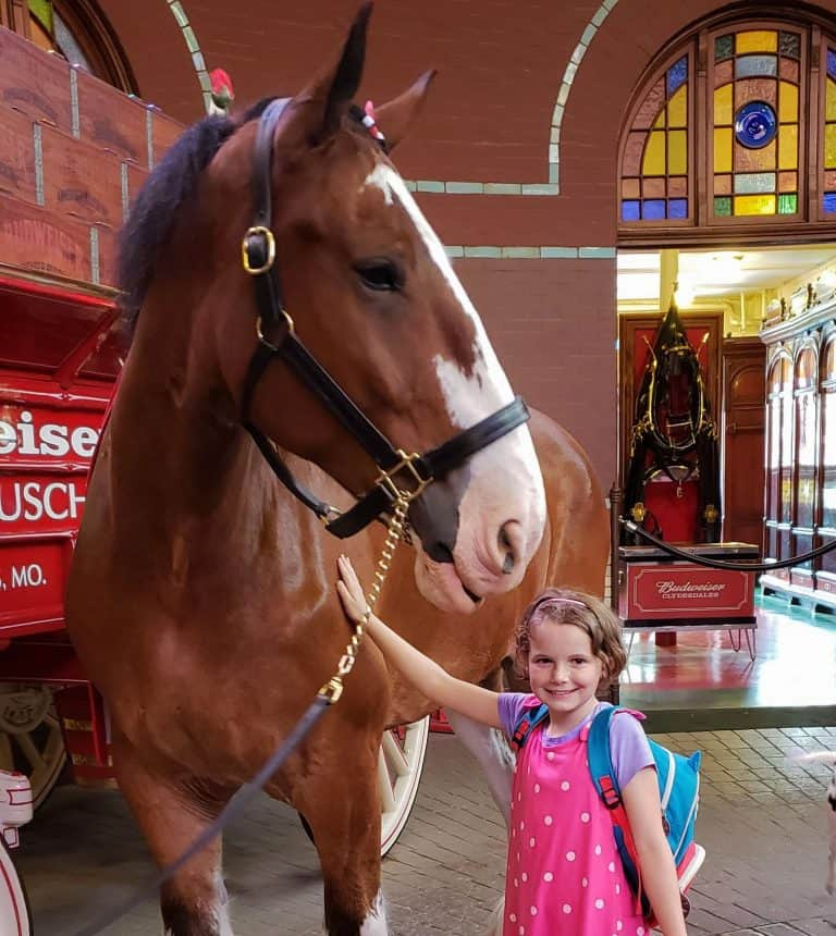 Kids will love the Clydesdale horses on the Brewery Tour