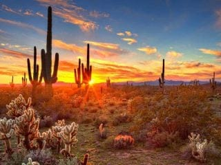 things to do in Arizona with kids