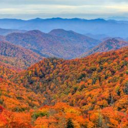 10 Fun Things to do in North Carolina with kids