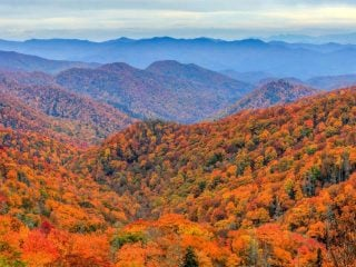 things to do in North Carolina with Kids