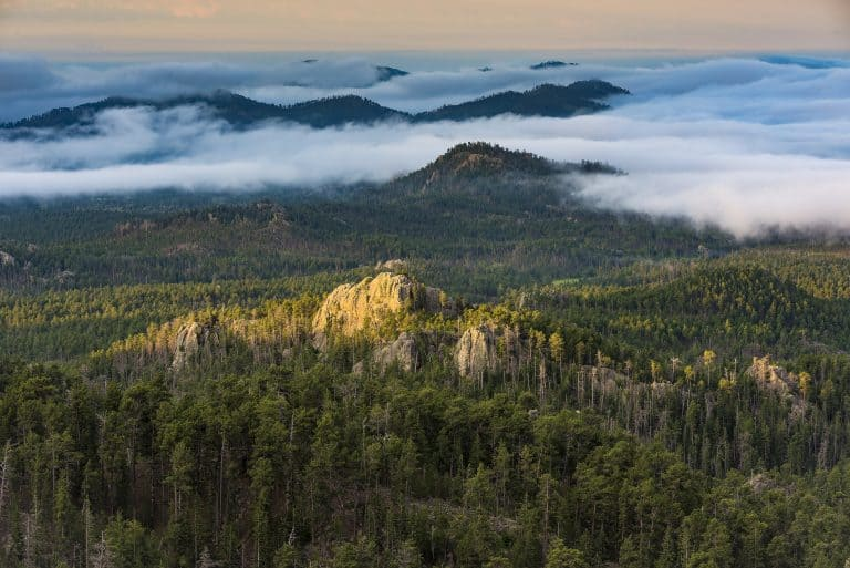 Custer State Park is one of the most amazing places to visit in South Dakota
