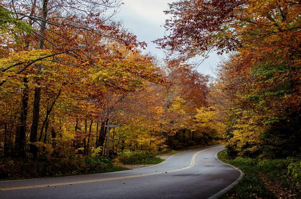 stowe fall photo