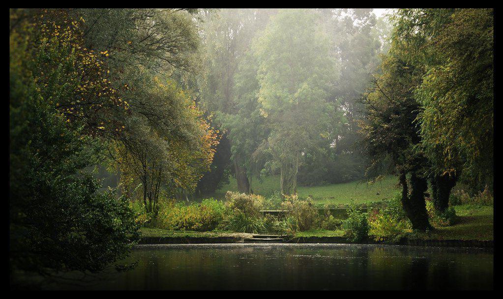 essex autumn photo