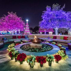 The Best Dallas Christmas Events for Families in 2020
