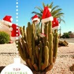The Best Tucson Christmas Events in 2020 1