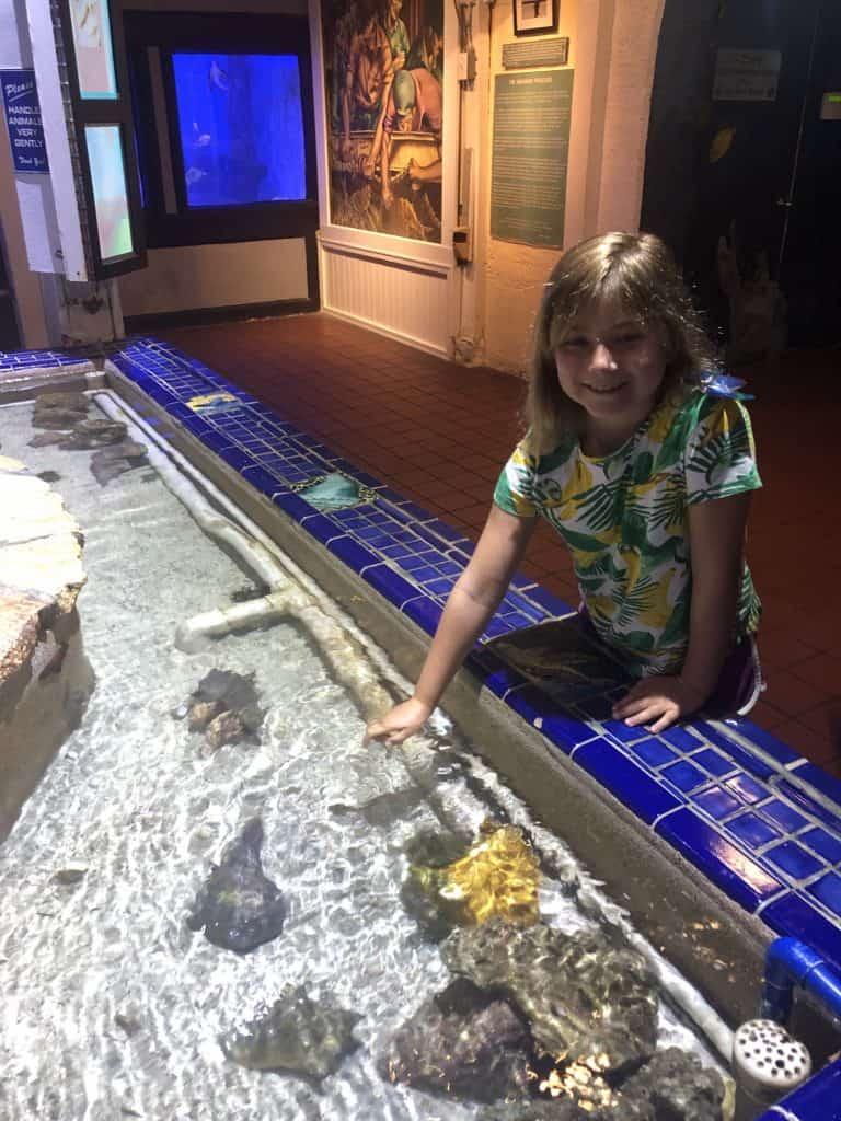 Key West with kids - Key West Aquarium