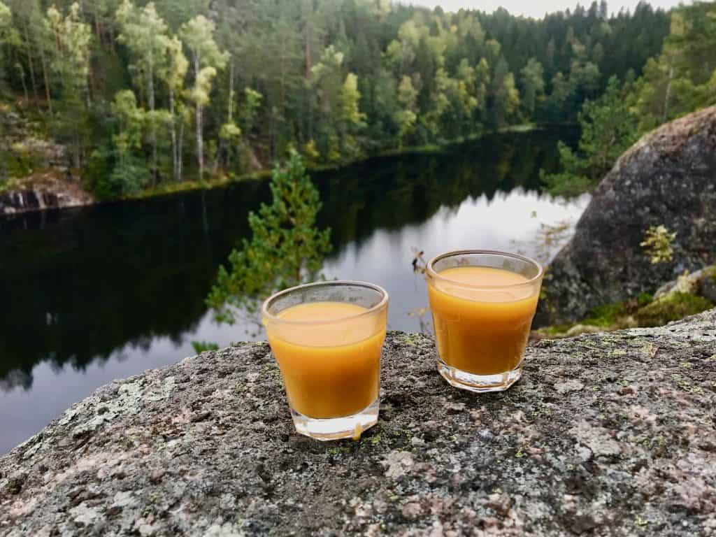 Ultimate Guide to Finland | 20+ Things to do Finland 8