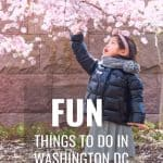 The Absolute BEST Things to do in DC with Toddlers 1