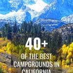 40+ of the Best Campgrounds in California 1