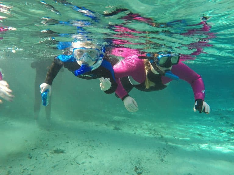 Snorkeling at Three Sisters Springs looking for manatees