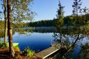 Nuuksio National Park - Hiking and Nature Near Helsinki
