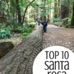 Top 10 Fun Things to do in Santa Rosa, California with kids! 1