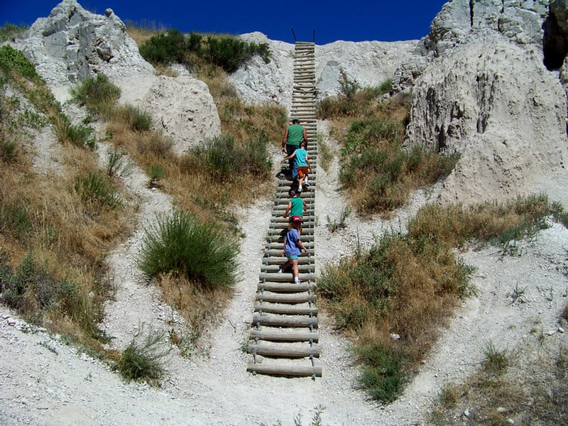 Badlands Notch Trail Ladder
