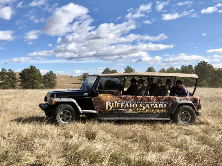 Buffalo Safari Jeep Tour Custer State Park